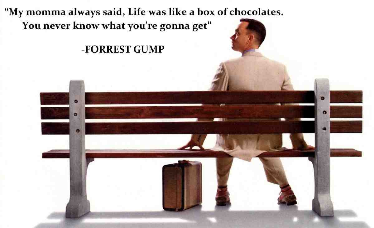 Life is Like a Box of Chocolates essay