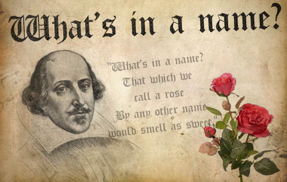 what's in a name essay