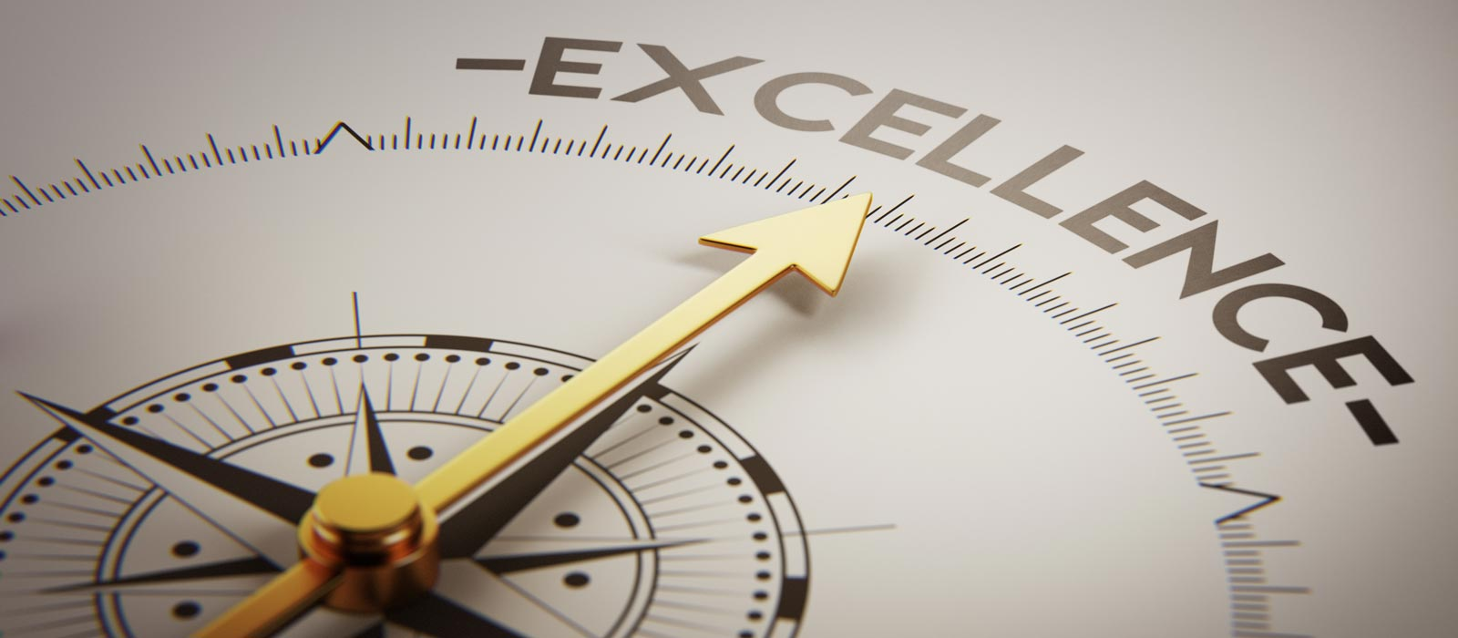 essay on excellence